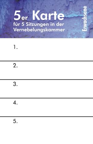 wiesbadener-salzgrotte-eine-5er-eintrittskarte-fuer-erwachsene-vernebelungskammer