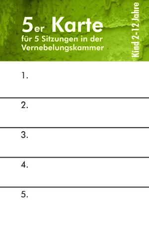 Wiesbadener Salzgrotte eine 5er Eintrittskarte für Kinder Vernebelungskammer